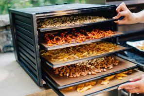 What's your favorite kitchen tool? I'm personally obsessed with my dehydrator! In this post, I'm sharing why I love it so much and 9 things I make in it!